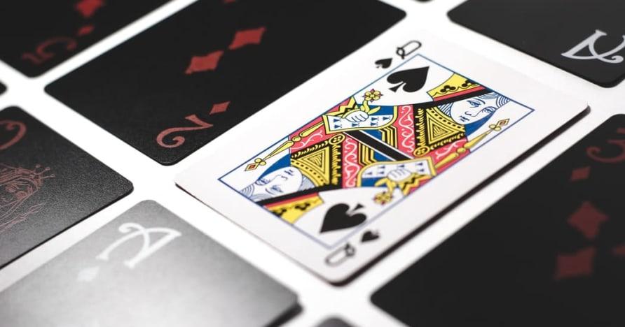 Die besten Entwickler und Anbieter von Online-Blackjack-Software